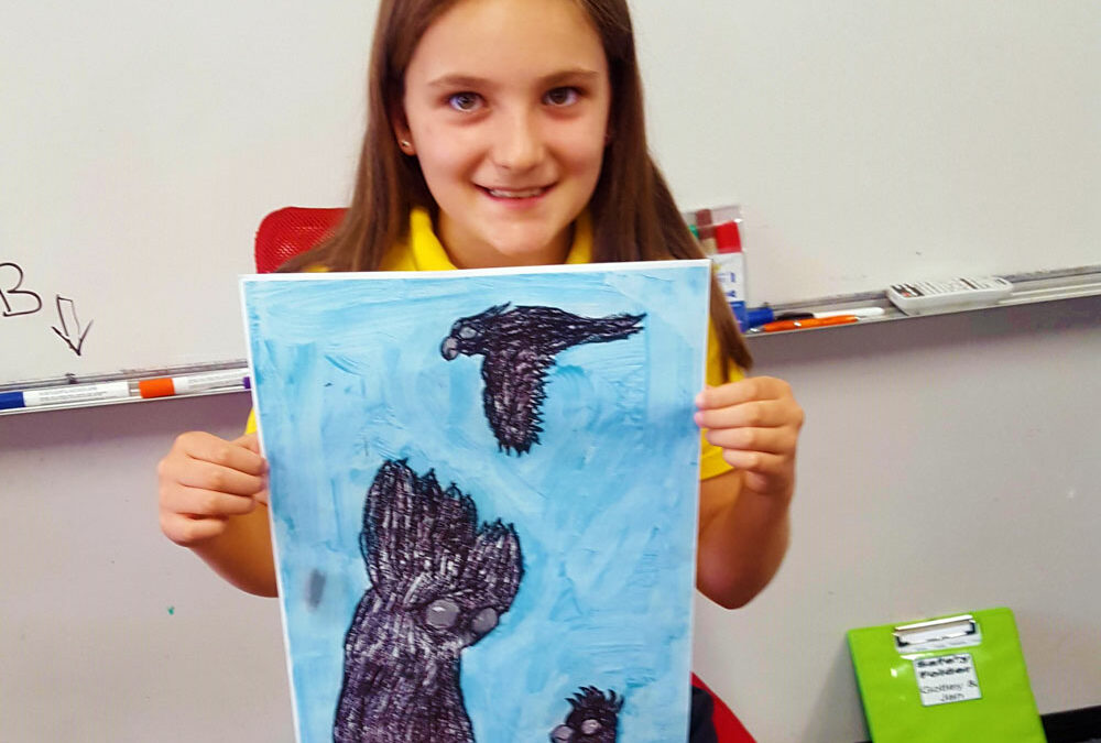 Studying The Black Cockatoo in Year 4/5 Literacy