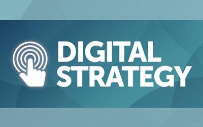 Statewide Digital Strategy Survey